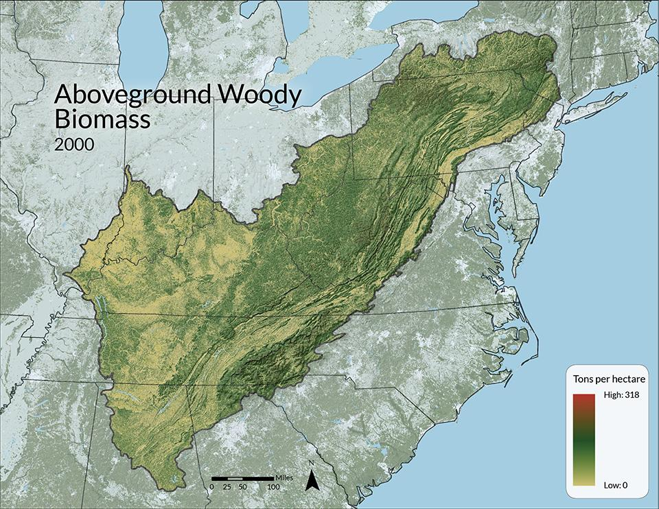 The Woods Hole Research Center, The National Biomass and Carbon Dataset, 2000